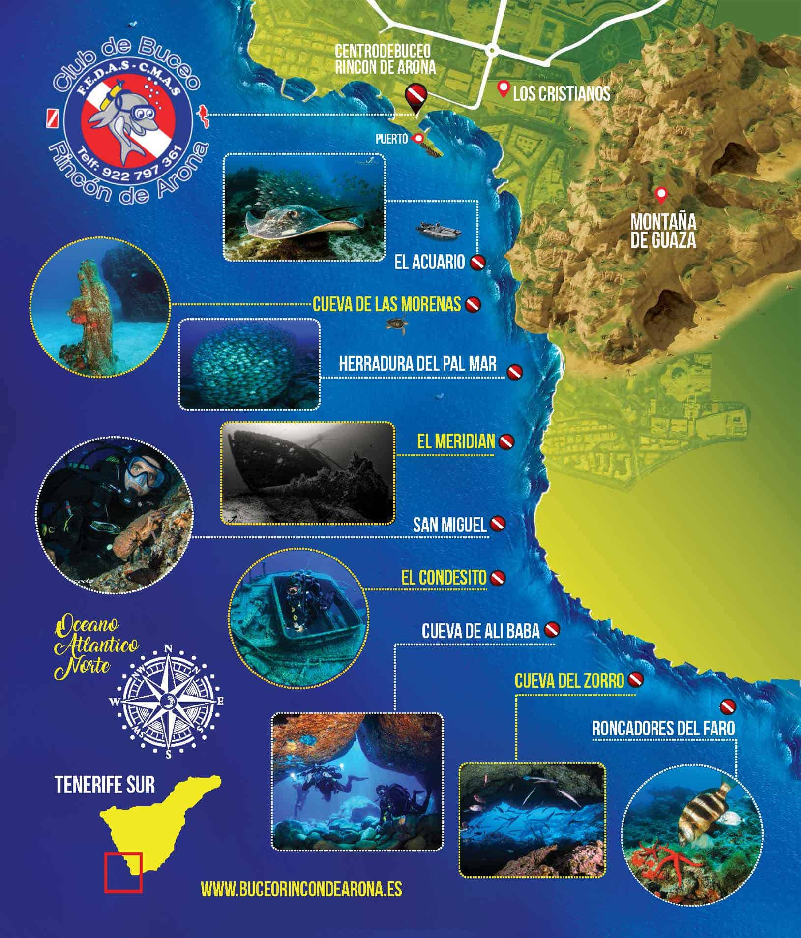 Dive with turtles in Tenerife. Diving club Rincon de Arona.